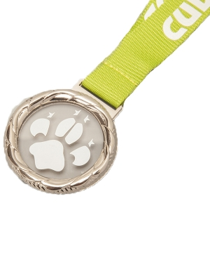 Cubs Fun Medal