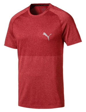 Puma evoKNIT Basic Tee Red Dahlia