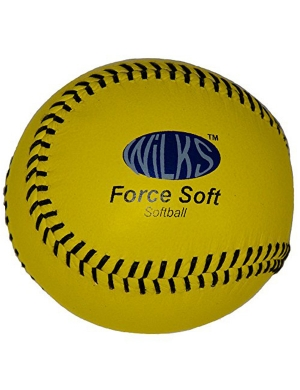 Aresson Force Soft Practice Softball