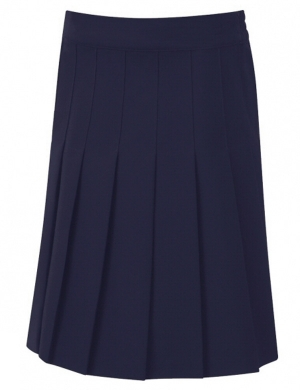 David Luke DL974 Junior Eco-Skirt Navy (Age 3 - 13)