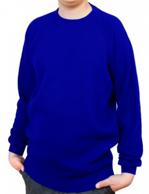 Woodbank Sweatshirt Royal